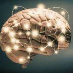 دراسة مذهلة عن تبديل الاراء السياسية من خلال تحفيز الدماغ