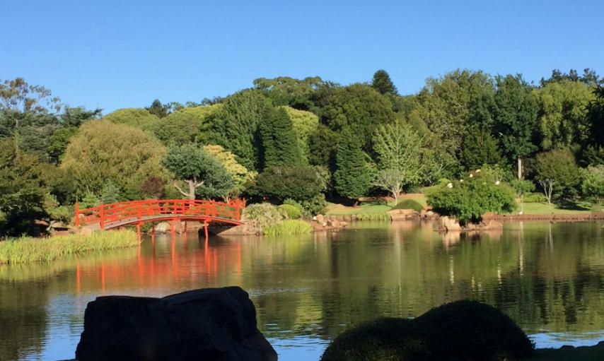 الحديقة اليابانية - نبذة عامة عن مدينة توومبا الاسترالية