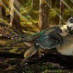 اكتشاف أحافير ديناصور قوس قزح في الصين