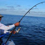 طريقة صناعة عجين صيد الأسماك