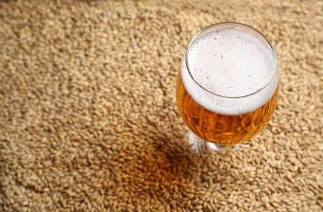 فوائد مشروب الشعير للحامل والجنين المرسال