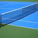 قصة لاعبة التنس العالمية اليز تاميلا