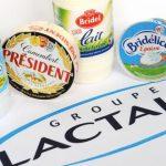 """السالمونيلا تطيح بشركة """" لاكتاليس """" الفرنسية"""