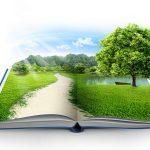 أقسام الدراسات البيئية وفرص العمل بها