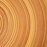 دراسة حديثة وجدت طريقة تجعل الخشب أقوى من الصلب