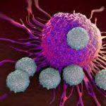 أنواع السرطان التي تنتقل إلى العظام