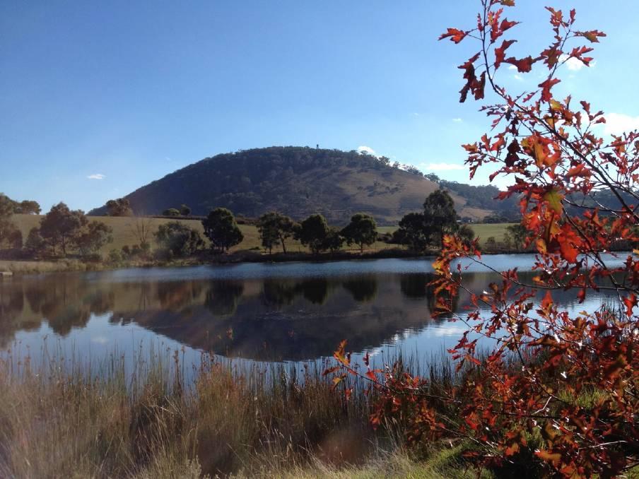 مدينة بالارات الاسترالية بالصور جبل-بونيني�