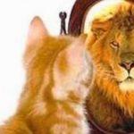 حكم وأقوال الفلاسفة عن قيمة الذات