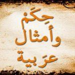 افضل حكم قيلت عن الاسلام