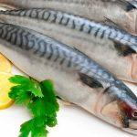 فوائد تناول سمك السردين للحامل