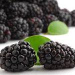 فوائد عصير فاكهة الارونيا للجسم