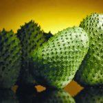 فوائد فاكهة القشطة لمكافحة الاورام السرطانية
