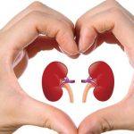 ارتفاع ضغط الدم الكلوي وكيفية الوقاية منه
