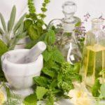 طرق علاج الديسك بالأعشاب