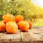دور البرتقال في إنقاص الوزن