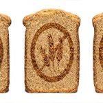 دراسة حول التفسير البيولوجي لحساسية القمح