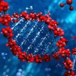 الأمراض الجينية الشائعة