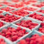 فوائد تناول الفواكه لعلاج مرض البواسير
