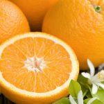 فوائد فاكهة كينو kinnow