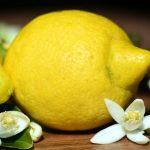 علاقة الليمون ومرض ضغط الدم