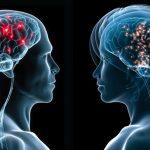 دراسة جديدة تبين الاختلافات بين الذكور والإناث في مجال العلوم