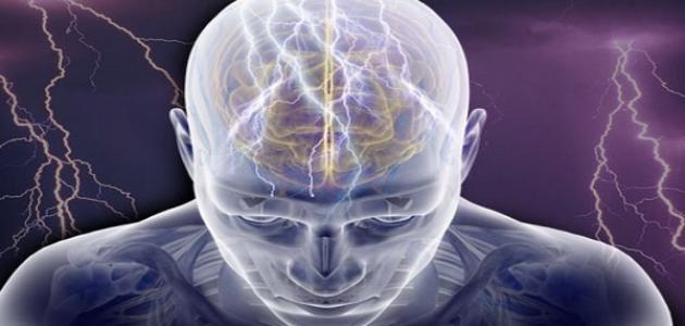متراس Rouse حبر الشحنات الكهربائية في الدماغ Comertinsaat Com