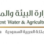 سعودي جاب أحدث نظام زراعي بالمملكة