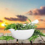 أفضل الأعشاب لتطهير الرئتين والجهاز التنفسي