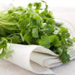 حقائق غذائية عن أوراق الكزبرة