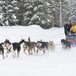 جولة إلى مركز ألاسكا للتراث المحلي