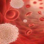 علاج حموضة الدم بالاعشاب