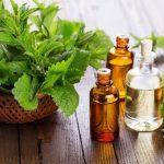 فوائد زيت الشاي الأخضر للبشرة