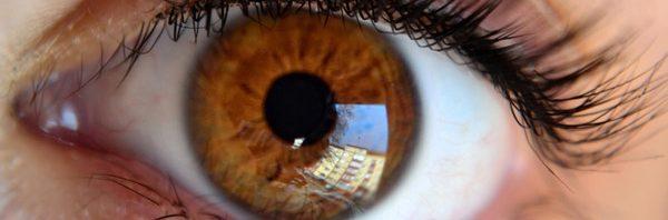 d0392b3a3 علاج فقدان الرؤية بعد الإصابة بالضمور البقي والالتهاب الشبكي   المرسال
