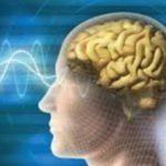حقائق علوم الدماغ حول أسباب إدمان العادة السرية