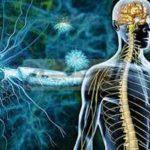 دور الميلاتونين في علاج التصلب المتعدد