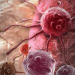 علاقة مرض السرطان بالوراثة