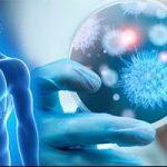 علاج التهاب الكبد المزمن B باستخدام الخلايا المناعية