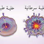 الفرق بين الخلايا السرطانية والخلايا الطبيعية