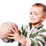 أهمية السيروتونين عند الأطفال و نسبة إفرازه