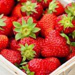 فوائد الفراولة في مقاومة السرطان