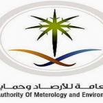 خدمات بمقابل مالي من الهيئة العامة للأرصاد وحماية البيئة
