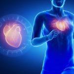 الحمية عالية البروتين تزيد خطر فشل القلب لدى الرجال متوسطي العمر