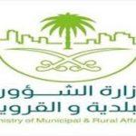 أهداف برنامج البلدية الإلكترونية
