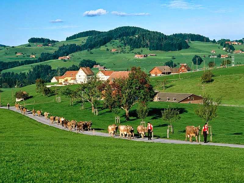 الريف في النمسا Appenzell_Switzerland