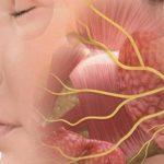 علاج التهاب العصب الخامس بالأعشاب