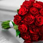 أجمل ما قيل عن الورد