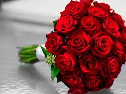 00dc0f35a أجمل ما قيل عن الورد | المرسال