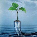 دور المياه في نشوء الحضارات