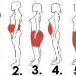 معلومات عن توزيع الدهون وأنواعها في الجسم