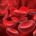 بحث عن عدد الخلايا في جسم الانسان